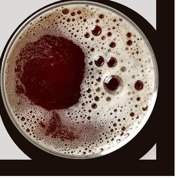 https://dwiekrople.pl/wp-content/uploads/2017/05/beer_transparent.png